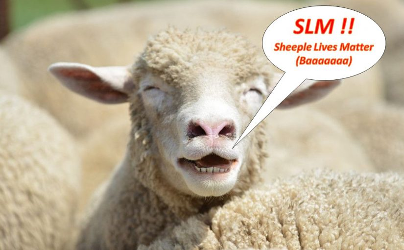 """""""Tell me again, who are these people called Sheeple?"""""""